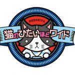 むーにゃん テレビ神奈川「猫のひたいほどワイド」にて取材