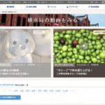 NHK総合「ひるまえほっと」で湘南オリーブの郷が紹