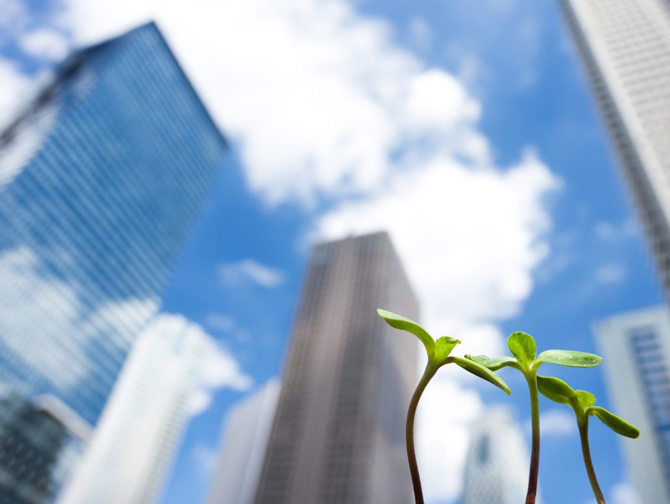小規模事業者持続化補助金公募開始